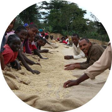 Etiopie Yirgacheffee Adado