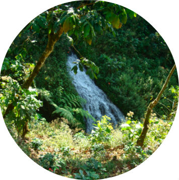 Guatemala Manila San Ignacio