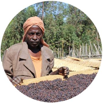 etiopie-biftu-gudina-kruh